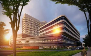 Partners HealthCare International Rendering